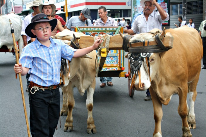Agriculture Protest